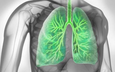 Asthma bronchiale – 10 Fakten zur Lungenkrankheit